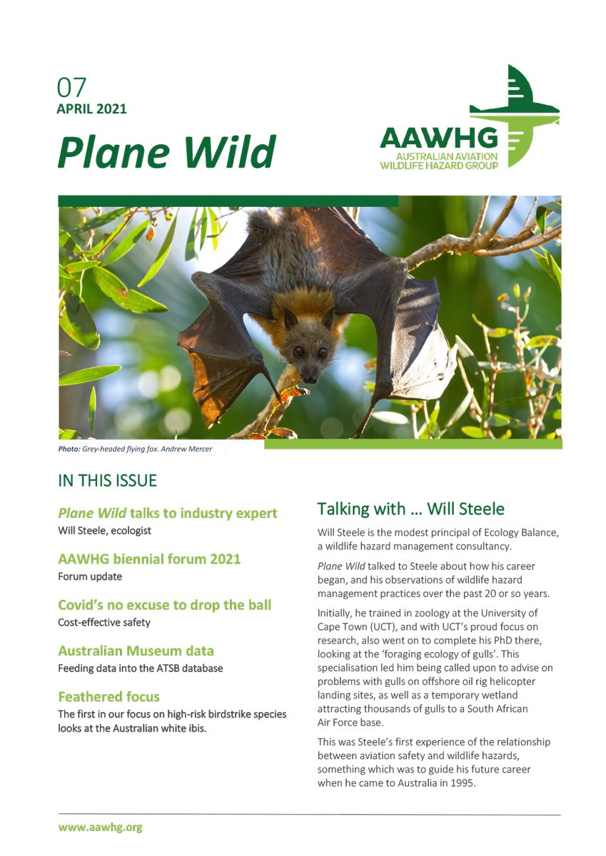 AAWHG Newsletter issue 7 cover